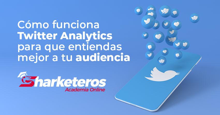 Img Articulo Como funciona Twitter Analytics para que entiendas mejor a tu audiencia